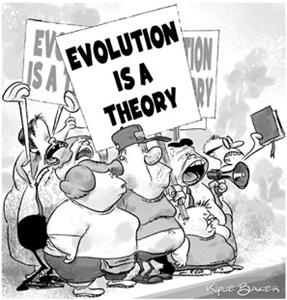Cartoon Evolution is a Theory