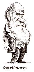 CharlesDarwinCartoonByDGranlund
