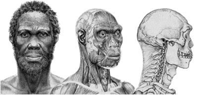 AfricanPhenotype