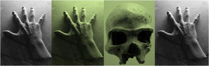 Hands Skull AA GPC cover