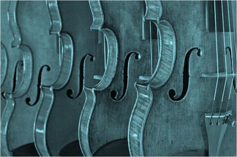 Violin Making Evolution Literacy