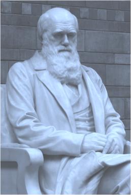 Darwin in Light Blue