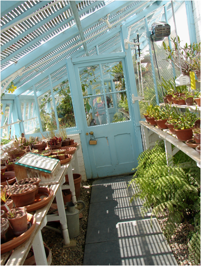 Down House Greenhouse inside