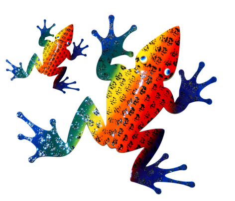 Frogs Color Evolution Literacy