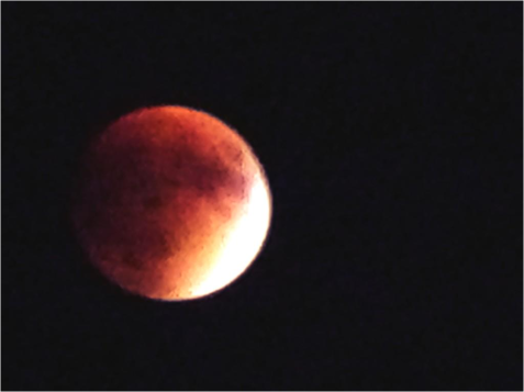 G Lunar Eclipse Newport - Photo G-Paz-y-Mino-C Sep 27 2015