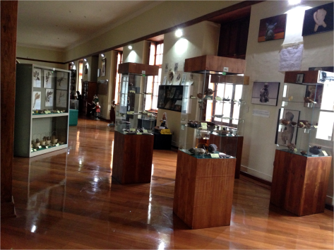 Inside Museum of Medicine Quito - Photo G-Paz-y-Mino-C 2015