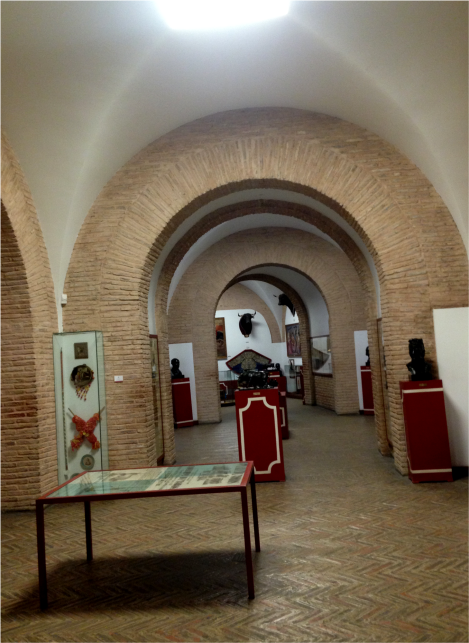 K - Seville Bullfight Museum _ Photo G-Paz-y-Mino-C 2015