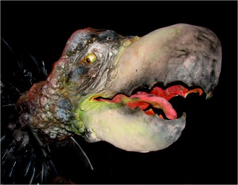 Strange Creature Zoology Museum Oslo