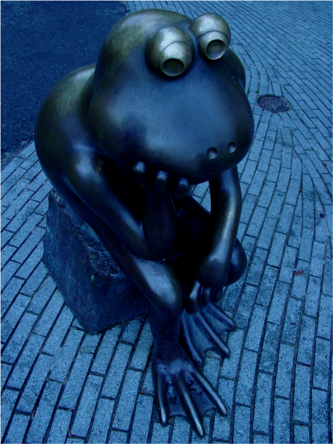 Thinking Frog Boston Photo G-Paz-y-Mino-C