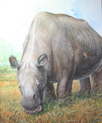 Toxodon Illustration