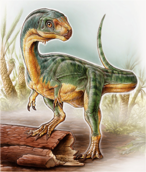 Chilesaurus diegosuarezi Illustration by Gabriel Lío