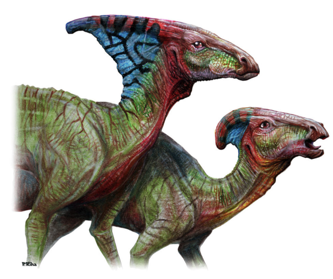 Parasaurolophus Art by PavelRiha