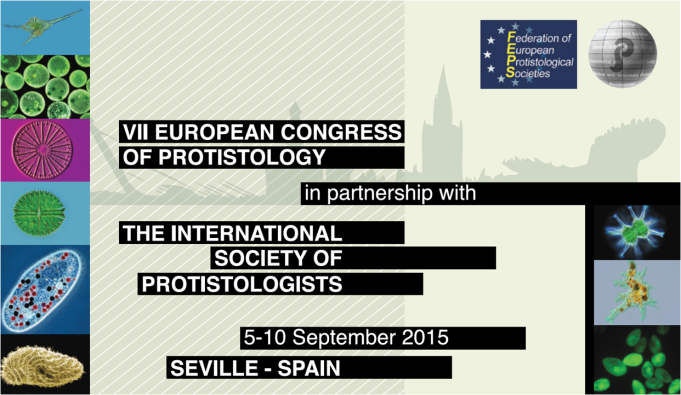 A - ISOP meeting Seville Spain 2015