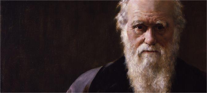 Darwin Painting