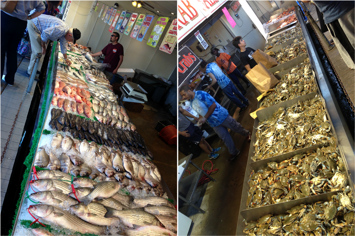 Scientific literacy evolution literacy for Washington dc fish market