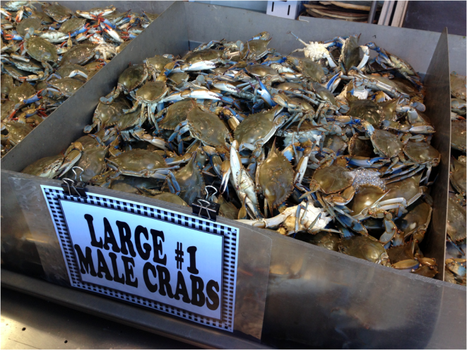 Crabs Chesapeake Bays Fish Market Washington DC - Photo G-Paz-y-Mino-C 2016