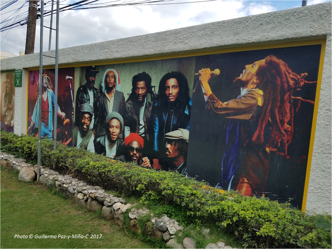 Evolution literacy science the universal language for Bob marley mural