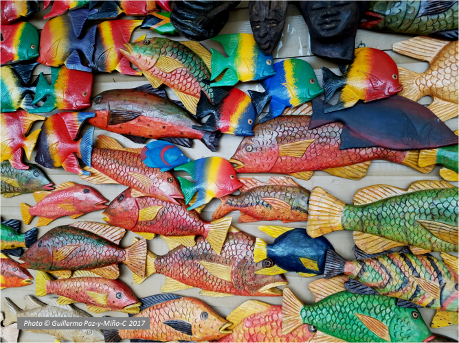 wooden-fishes-port-antonio-photo-g-paz-y-mino-c-2017