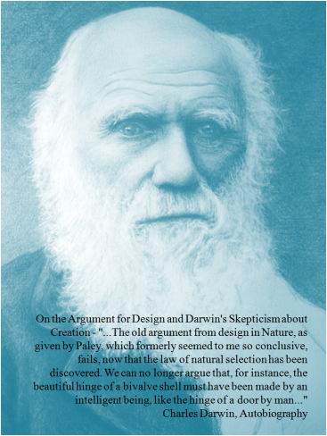 darwin-on-the-argument-for-design